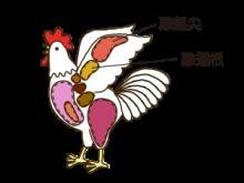 雞翅根・雞翅尖