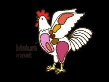Mature meat